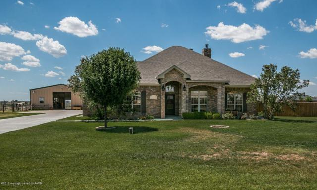20600 Mallard Cove, Canyon, TX 79015 (#19-47) :: Edge Realty