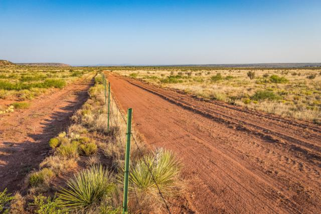 Conchas Lake Ranch, Other - Not in list, NM 88416 (#19-493) :: Lyons Realty