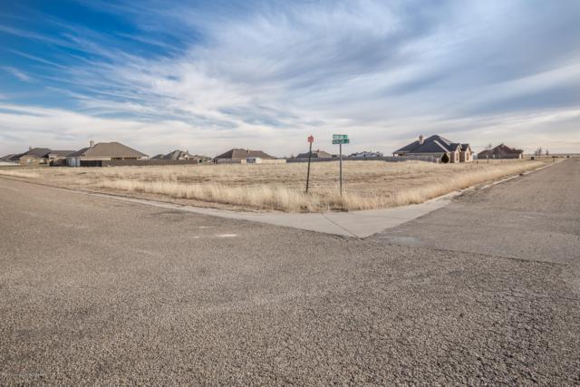 9001 Herring Park Dr, Amarillo, TX 79119 (#19-4952) :: Lyons Realty