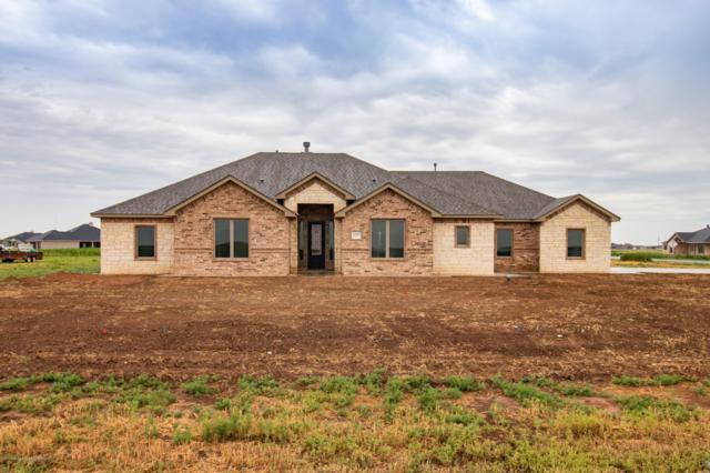 18300 Bradley Ln, Bushland, TX 79012 (#19-5017) :: Keller Williams Realty