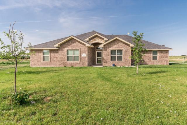 15410 Penny Ln, Amarillo, TX 79119 (#19-5033) :: Lyons Realty
