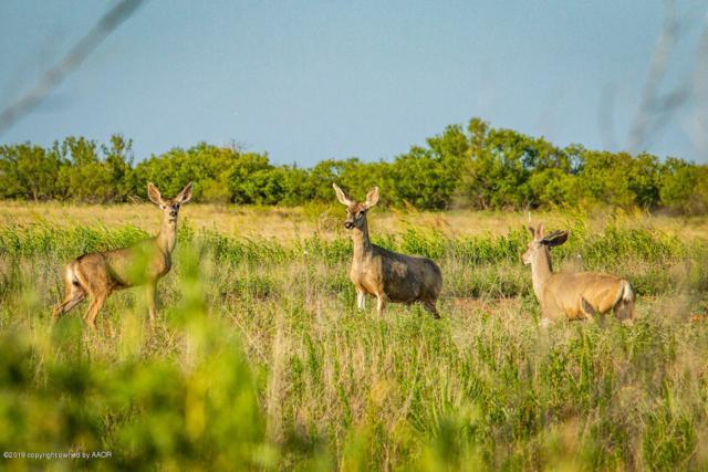 Brice Farm, Clarendon, TX 79226 (#19-5071) :: Live Simply Real Estate Group