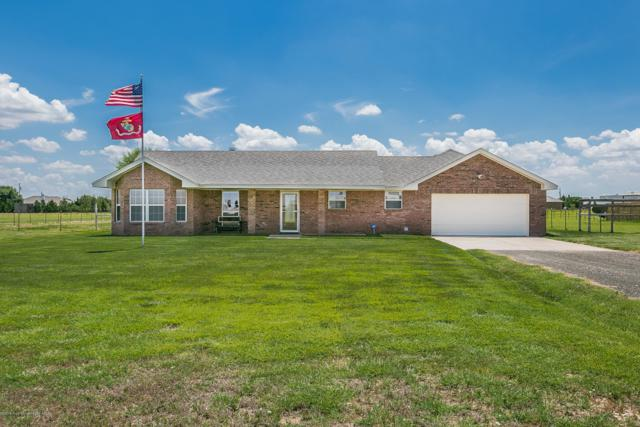 20211 Wind River Dr, Bushland, TX 79012 (#19-5083) :: Lyons Realty