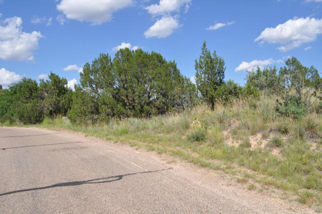 127 Timbercreek Dr, Amarillo, TX 79118 (#19-5239) :: Lyons Realty