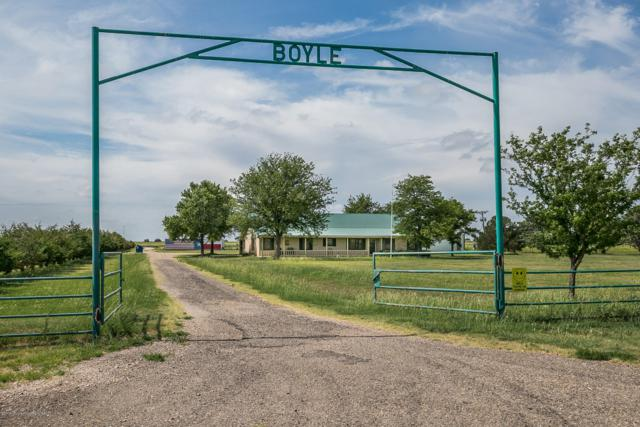 11828 County Rd 34, Amarillo, TX 79118 (#19-5385) :: Lyons Realty