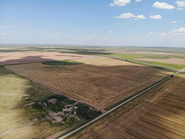 +/- 42.09 Acres Out Of Claude, Claude, TX 79019 (#19-5393) :: Lyons Realty