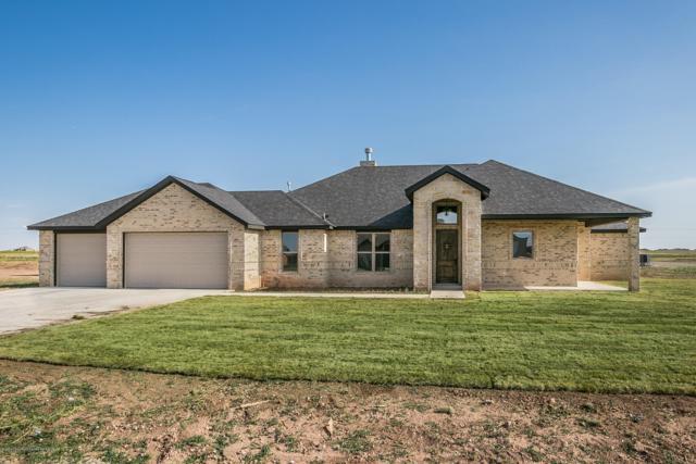 9600 Hey Jude Ln, Amarillo, TX 79119 (#19-5837) :: Lyons Realty