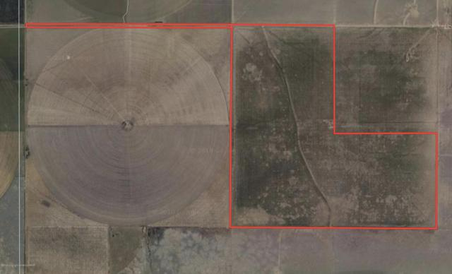 Oslo Farm Address Not Published, Gruver, TX 79040 (#19-625) :: Elite Real Estate Group