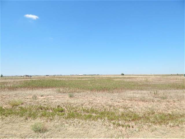 12260 Equestrian Trl, Amarillo, TX 79118 (#19-6715) :: Elite Real Estate Group
