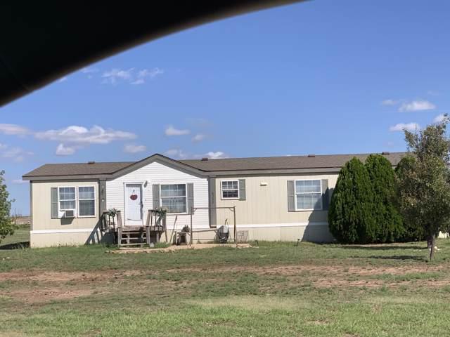 6230 Meredith Ln, Amarillo, TX 79118 (#19-6990) :: Lyons Realty