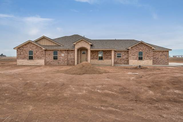 15110 Jack Cook Dr, Amarillo, TX 79119 (#19-7082) :: Lyons Realty
