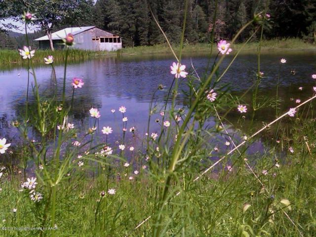 Address Not Published, Cloudcroft, NM 88317 (#19-766) :: Edge Realty