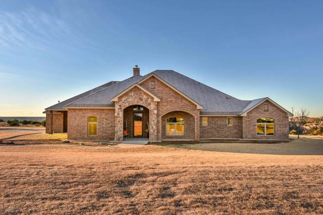 14100 Wilderness Trl, Amarillo, TX 79118 (#19-8250) :: Live Simply Real Estate Group