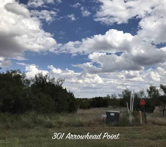 301 Arrowhead Pt, Canyon, TX 79015 (#19-8269) :: Lyons Realty