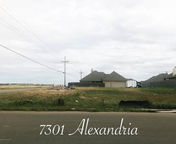 7301 Alexandria Ave, Amarillo, TX 79118 (#19-8276) :: Live Simply Real Estate Group
