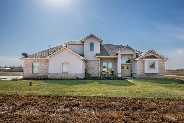 9191 Strawberry Fields Drive East, Canyon, TX 79119 (#19-8285) :: Lyons Realty
