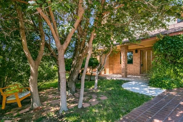 119 Caprock Ln, Amarillo, TX  (#19-8434) :: Lyons Realty