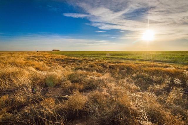 Chesnut Farms, Texline, TX 79087 (#19-866) :: Big Texas Real Estate Group