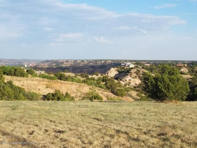 10500 Indian Camp Trl, Canyon, TX 79015 (#19-988) :: Edge Realty