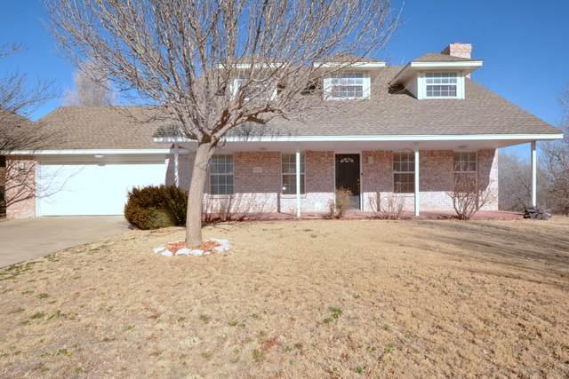 6500 Tilden Ct, Amarillo, TX 79124 (#20-1158) :: Lyons Realty