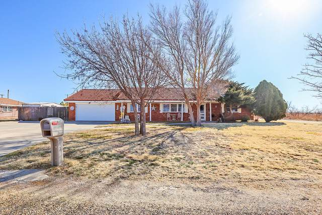 117 Rimrock Trl, Amarillo, TX 79108 (#20-1325) :: Lyons Realty