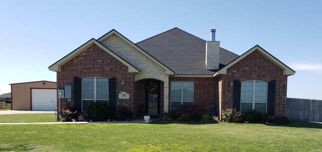 5100 Mesquite Springs Trl, Amarillo, TX 79119 (#20-1569) :: Lyons Realty