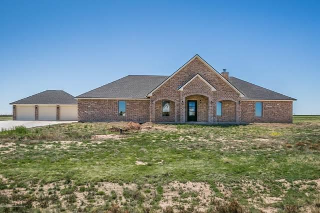 13221 Bluff Ridge Trl, Canyon, TX 79015 (#20-2169) :: Lyons Realty