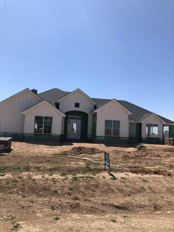 13437 Silver Pointe, Amarillo, TX 79124 (#20-2355) :: Lyons Realty