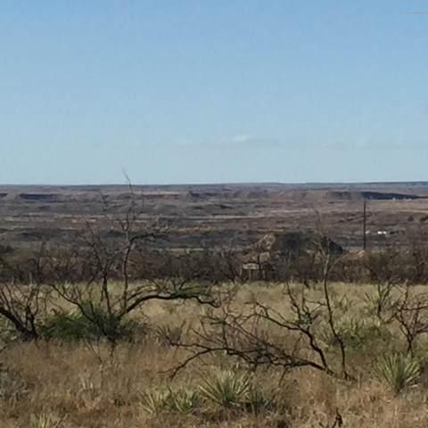 22301 Pipeline Rd, Valle De Oro, TX 79010 (#20-2377) :: Elite Real Estate Group