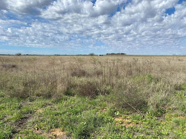 1 Farm To Market 1606, Other - Not In List, TX 79549 (#20-2524) :: Lyons Realty