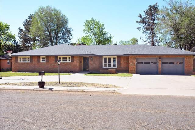 703 Lee St, Dimmitt, TX 79027 (#20-2801) :: Elite Real Estate Group