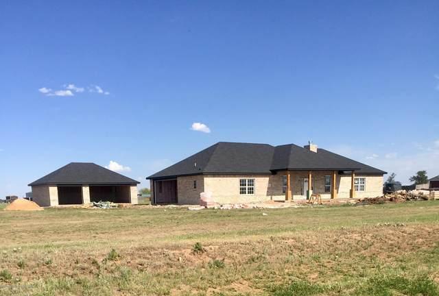 5401 Buffalo Springs Trl, Bushland, TX 79119 (#20-2825) :: Lyons Realty