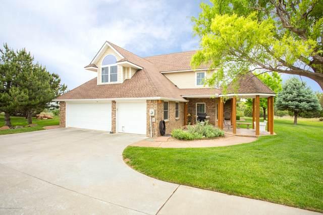 316 Cactus Dr, Amarillo, TX 79118 (#20-3187) :: Elite Real Estate Group