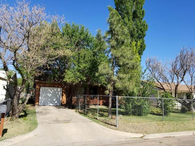 513 Heights Ave, Dalhart, TX 79022 (#20-3341) :: RE/MAX Town and Country