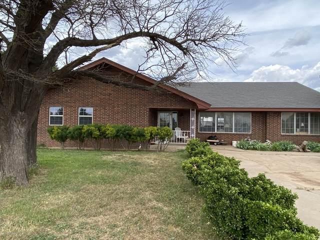 16213 Fm 2575, Amarillo, TX 79108 (#20-3689) :: Elite Real Estate Group
