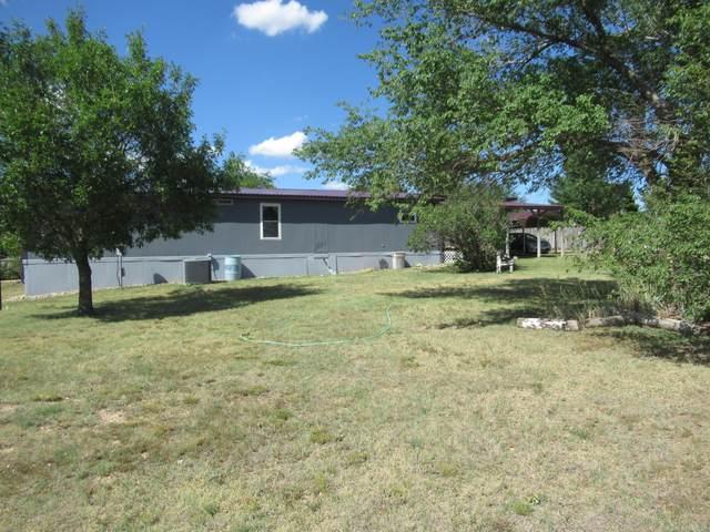 1407 Nez Perce Trl, Amarillo, TX 79108 (#20-4013) :: Elite Real Estate Group