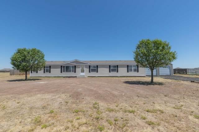 7800 Star Light Ln, Canyon, TX 79015 (#20-4201) :: Elite Real Estate Group