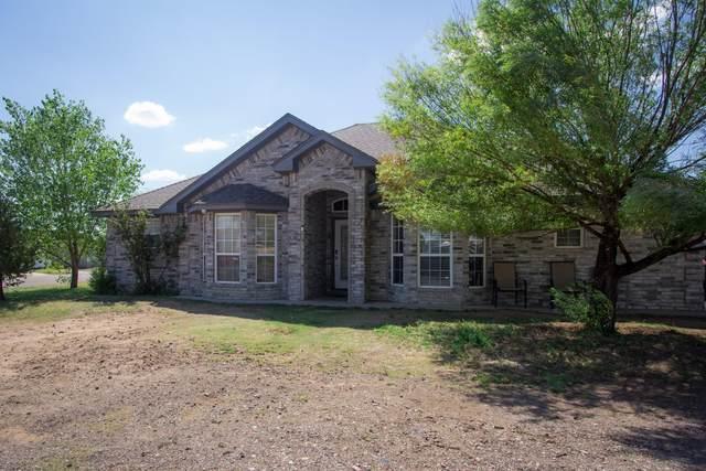 410 Birmingham St, Amarillo, TX 79104 (#20-4869) :: Lyons Realty