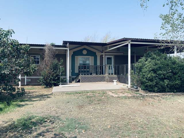 1919 Greg St, Amarillo, TX 79118 (#20-5412) :: RE/MAX Town and Country