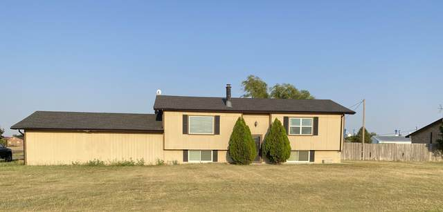 118 Mc Murry, Dumas, TX 79029 (#20-5914) :: RE/MAX Town and Country