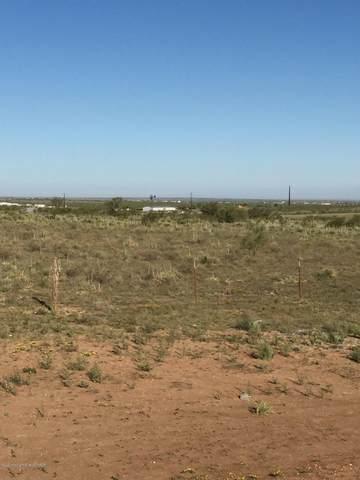 1444 Riesling Way, Amarillo, TX 79124 (#20-6201) :: Lyons Realty
