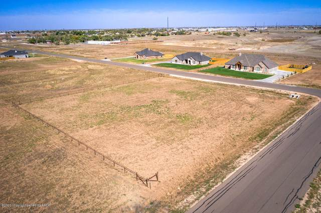 15170 Anna Kate, Amarillo, TX 79119 (#20-6611) :: RE/MAX Town and Country