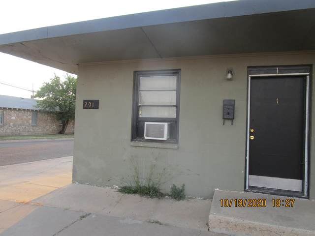 201 Mcgee St, Borger, TX 79007 (#20-6665) :: Lyons Realty