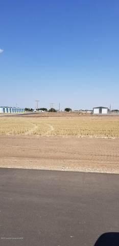 Denali Drive, Canyon, TX 79015 (#20-6685) :: RE/MAX Town and Country