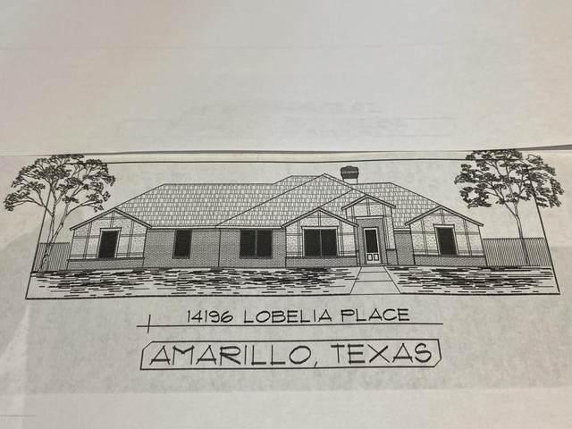 14196 Lobelia Pl, Amarillo, TX 79119 (#20-6718) :: Lyons Realty