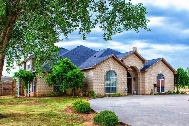 11315 Collin Wade Rd, Amarillo, TX 79124 (#20-6911) :: RE/MAX Town and Country