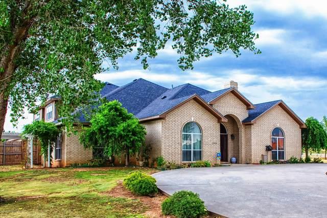 11315 Collin Wade Rd, Amarillo, TX 79124 (#20-6911) :: Elite Real Estate Group