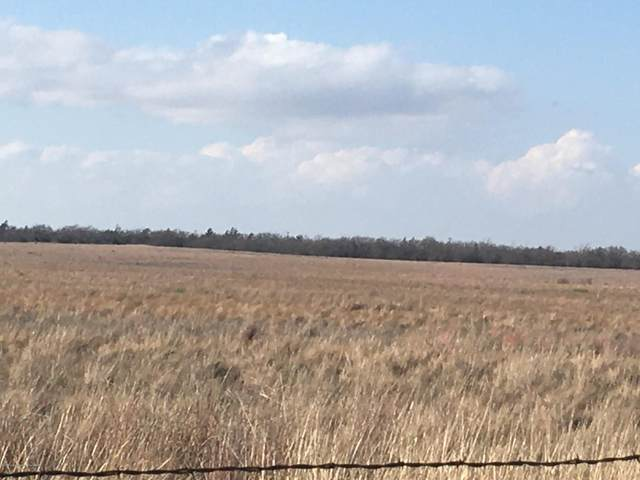 14496 Co Rd I, Mobeetie, TX 79061 (#20-6976) :: Elite Real Estate Group