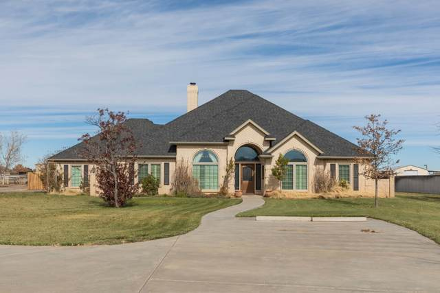 9010 Dove Rd, Canyon, TX 79015 (#20-7108) :: RE/MAX Town and Country