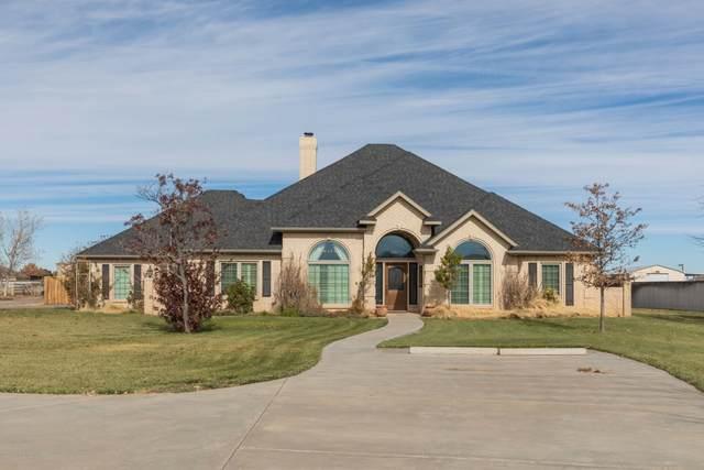 9010 Dove Rd, Canyon, TX 79015 (#20-7108) :: Lyons Realty